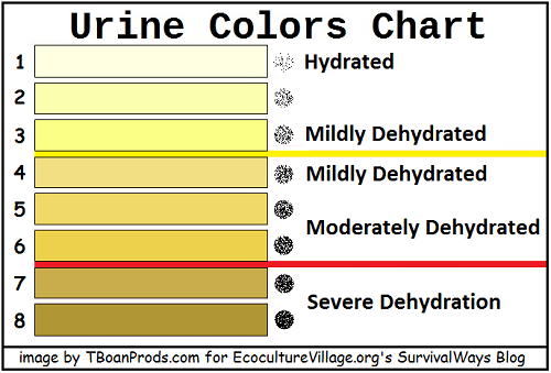 Piss chart dehydration